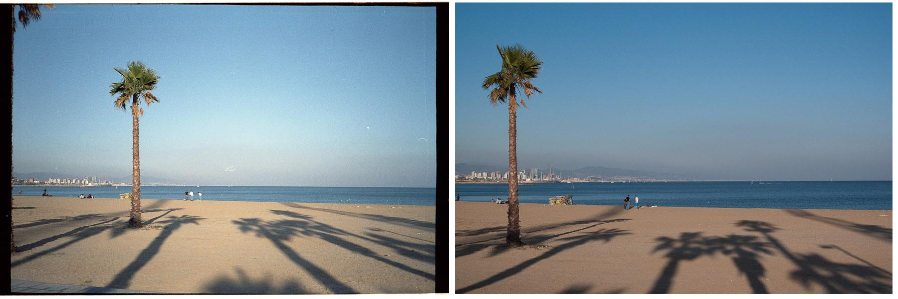 Film vs Digital | alexander olsson photographyalexander olsson ...